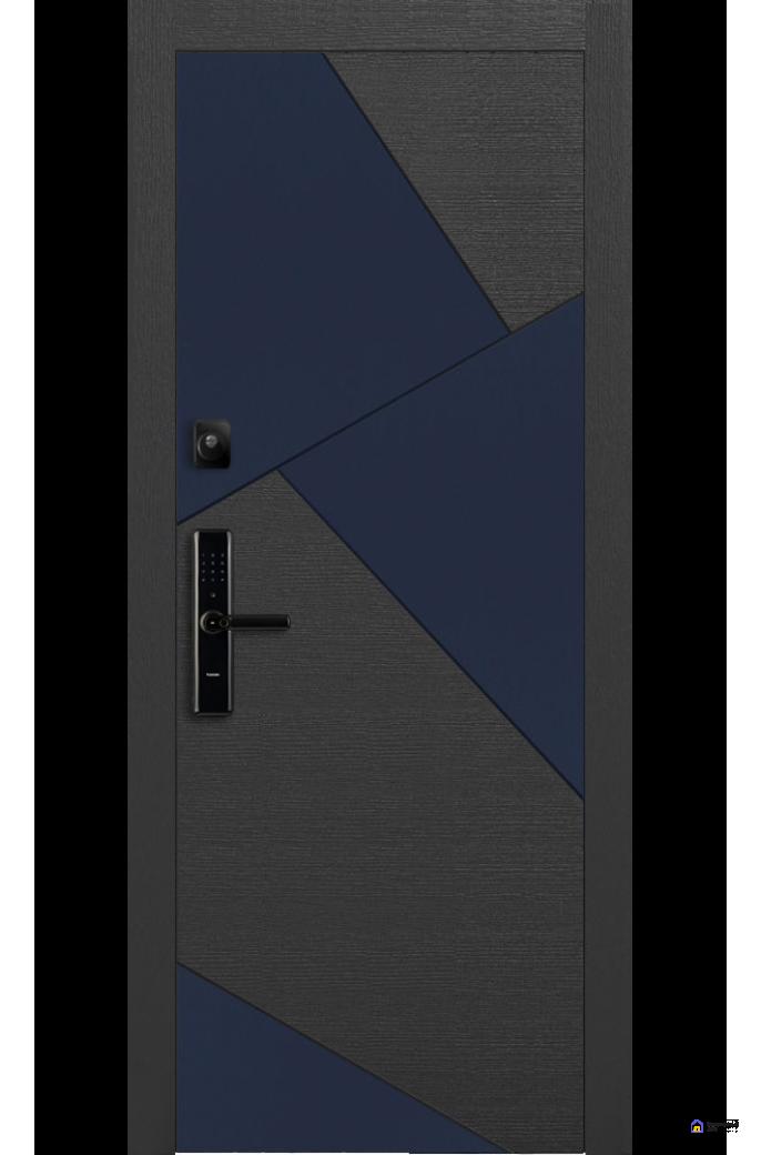Умная дверь Pragma  PR 8, фото 1