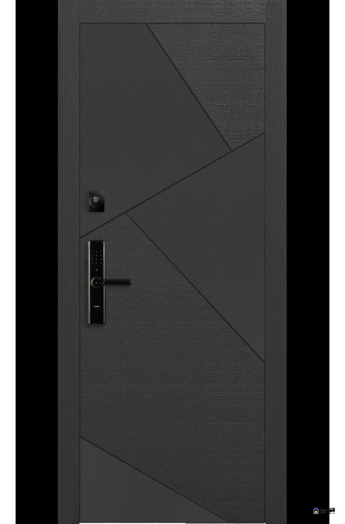 Умная дверь Pragma  PR 8, фото 2